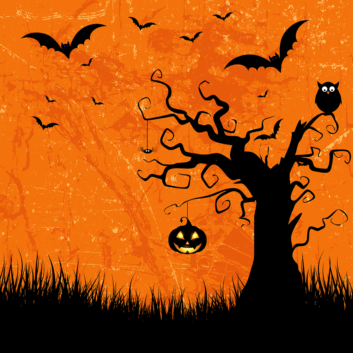 Học từ vựng qua hình ảnh chủ đề Halloween