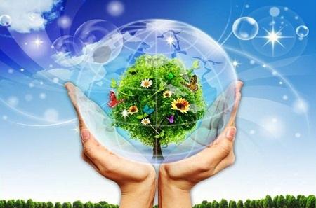 Từ vựng tiếng Trung bảo vệ môi trường