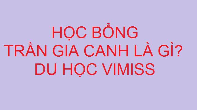 hinh-anh-hoc-bong-tran-gia-canh-la-gi-1
